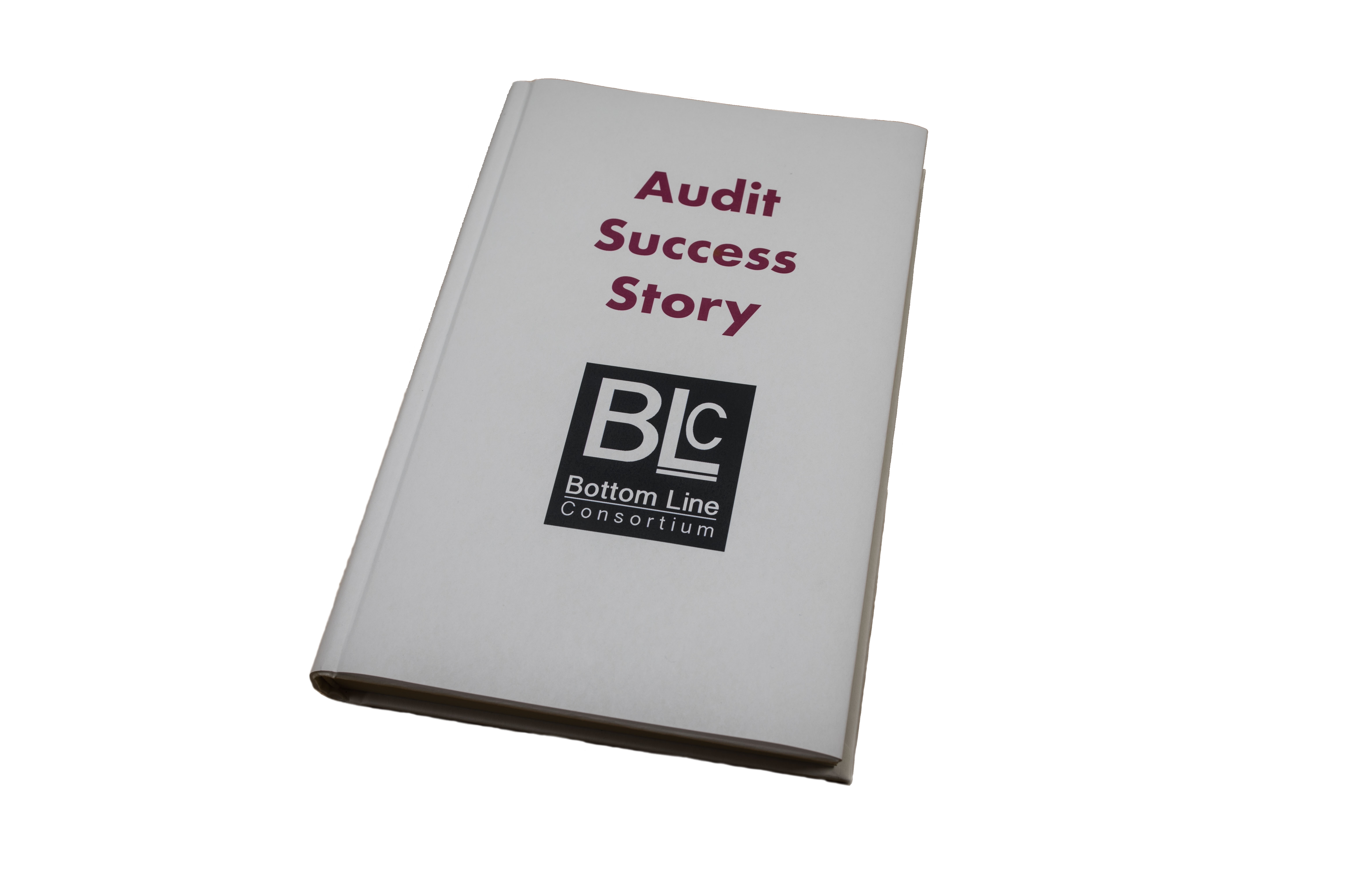 BLC Software Audit Services